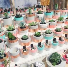 These plant-centric 'grams are sure to give you a serious floral fix.Flowers are always beautiful, especially when the pots match them. Find images and videos about flower, diy and creative on We Heart It - the app to get Concrete Pots, Concrete Planters, Diy Planters, Hanging Planters, Concrete Crafts, Concrete Projects, Painted Flower Pots, Painted Pots, Pots D'argile