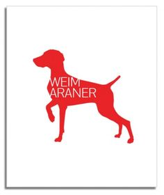 Weimaraner Breed Love Silkscreen Poster