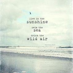 live in the sunshine. swim the sea. drink the wild air. -- emerson