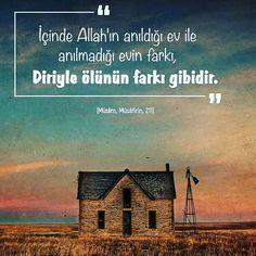 #diri #ölü #ev #Allah #fark #hadis #islam #müslüman #türkiye #istanbul #rize #trabzon #eyüp #ilmisuffa