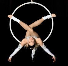aerial hoop art - Google Search