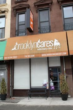 Come visit Brooklyn Cares!