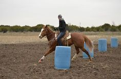 Casting the Mold Whether you're on a green horse or a finished one, develop a rock-solid turning style with this drill from Kelsey Mackay.