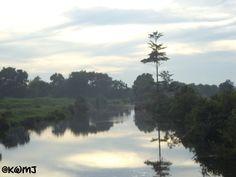 Beautiful scenery in Pangkoh .
