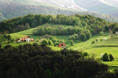 Choosing Land for Homestead Living