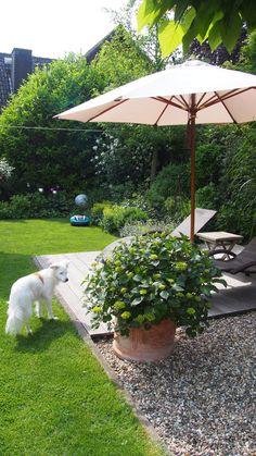 … sequelae … - All For Garden Back Gardens, Small Gardens, Outdoor Gardens, Design Jardin, Cactus Y Suculentas, Garden Styles, Lawn Mower, Garden Inspiration, Backyard Landscaping
