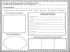 Animal Research Report Graphic Organizer | Making Lemonade in Second Grade
