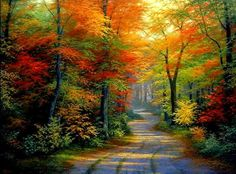 Fall Season - Forests Wallpaper ID 1831769 - Desktop Nexus Nature❤ Nature Paintings, Beautiful Paintings, Beautiful Landscapes, Pictures To Paint, Nature Pictures, Art Pictures, Landscape Art, Landscape Paintings, Bob Ross Paintings