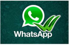 The Whole world is joining in whatsApp and sending messages through WhatsApp. Where the New Feature WhatsApp Blue has came in to existence by Opening the Message the confirmation Back as to the sender a Blue Tick and some people are happy with this and the other are not Happy with WhatsApp Ticks.