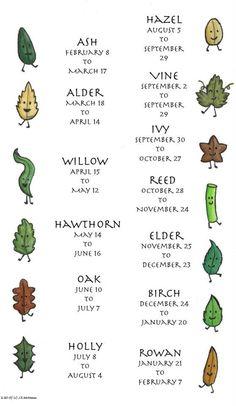 Celtic Astrology #horoscope  #astrology www.amplifyhappinessnow.com