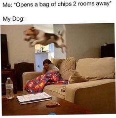 21 Best Lol funny memes http://ibeebz.com