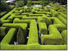 I love...mazes!