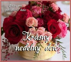 Good Morning, Night, Rose, Flowers, Plants, Den, Angels, Buen Dia, Pink