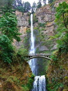 Multnomah Falls on the Columbia River, Oregon
