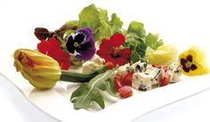 Ktoré kvety sú jedlé?
