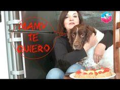 San Valentin: torta   tarta   pastel para perros, con forma de corazón. ...