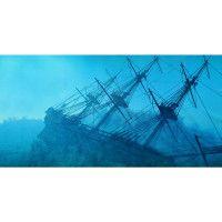 Top Fin® Shipwreck Aquarium Cling - PetSmart