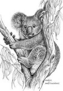 26 Best Koala Tattoos Images Koala Tattoo Koala Bears Koalas