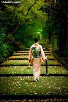 和服姿 じゃまかんばん『日本と世界の伝統写真日記』