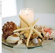 Seashell centerpiece.