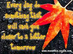 Cada dia faz algo que te aproxime de uma amanhã melhor!