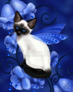 Sapphire Cat by MelissaDawn on deviantART