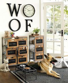 dog corner ideas Our Cambridge Storage Cabinet is perfect for storing pet supplies and any other miscellaneous items you might have around your pantry or laundry room. Animal Room, Dog Room Decor, Pet Decor, Dog Organization, Organizing Ideas, Dog Station, Dog Storage, Storage Shelves, Organization Ideas