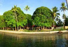 Maluku Divers Resort - Indonesïe - Ambon - Molukken - Verre oosten- Dive and Travel.