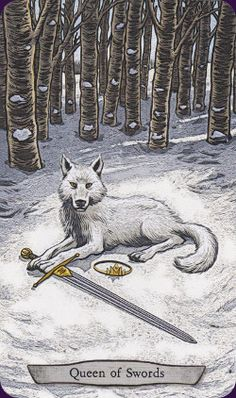 Animal-Totem-Tarot https://www.youtube.com/watch?v=Ix6bAew_qhg