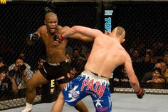 63 Best Mma Ufc Images Mixed Martial Arts Rashad Evans Ultimate