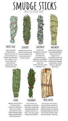 Have you heard about smudging sticks? Sage sticks are quite common, but here's a list of a few other ones Have you heard about smudging sticks? Sage sticks are quite common, but here's a list of a few other ones! Smudging Prayer, Sage Smudging, Healing Herbs, Natural Healing, Witchcraft For Beginners, Spiritual Cleansing, Energy Cleansing, Herbal Magic, Herbal Oil