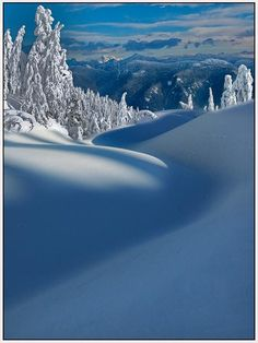 Mount Seymour Provincial Park,British Columbia.