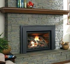 50 best fireplace inserts wood gas pellet images in 2019 rh pinterest com