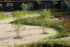 Ensemble d'habitation et résidence pour personnes âgées à Purmerend aux Pays-Bas                                                                                                                                                                                 Plus