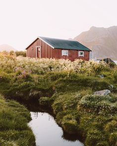 found while exploring the fishing villages of northern norway. by ravivora