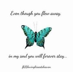 Image result for Butterfly Quotes on death