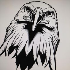 Eagle illustration WIP. #illustration #vector #eagle #sweyda