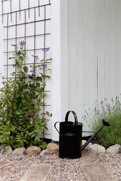 Garden Of Eden, Home And Garden, Backyard, Patio, Watering Can, Garden Inspiration, Deco, Outdoor Gardens, Terrazzo