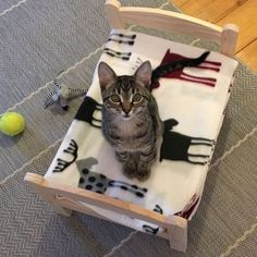 IKEA-Hack - ein zuckersüßes Katzenbett!