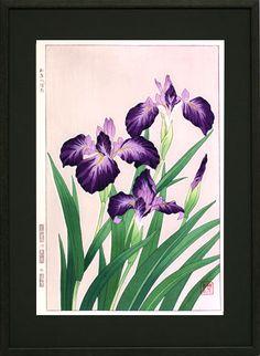 Iris 河原崎奨堂 『杜若』-木版画