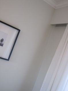 Benjamin Moore's Intense White (OC-51). A warm neutral light Gray.