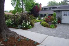 just using planting beds and hardscape in your front yard adds tons of color! #waterwiselandscaping