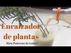Enraizador Natural de Plantas Líquido + Poderoso de todos - YouTube