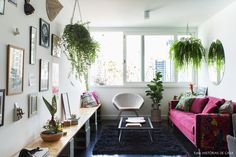 Sala de estar tem decoração em tons de preto, cinza e roxo, muitas plantas e parede galeria.