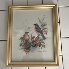Vintage Paul Whitney Hunter colorful bird artwork gold frame under glass farmhouse collectible bed and breakfast Vintage Art Prints, Vintage Walls, My Spare Room, Little Brothers, Bird Artwork, Displaying Collections, Red Berries, Blue Bird, Colorful