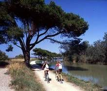 agriturismo in Francia: Languedoc Roussillon, Farm B and B in southern France: Languedoc Roussillon, fermes auberges Languedoc Roussillon