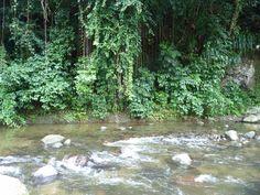 Grand Rivière au nord. An ti bain lariviè bon pou rafréchi kow a!