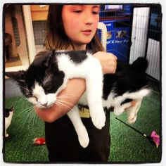 Matsu the cat loves being held. Doesn't he look happy?