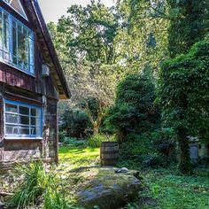 Keltainen talo rannalla: valaisimet Cabin, House Styles, Plants, Gardens, Home Decor, Inspiration, Ideas, Biblical Inspiration, Decoration Home
