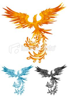 Phoenix Artes e ilustrações vetoriais livres de royalties